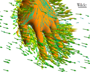 hand-close-up-water-flow-fluid dynamics